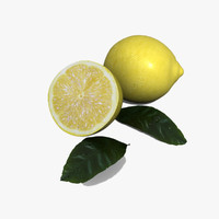 3ds max lemon citrus limonum