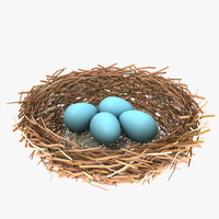 bird nest eggs 3d model