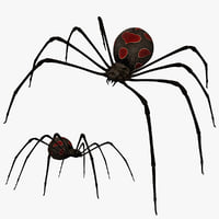 lightwave black widow latrodectus mactans