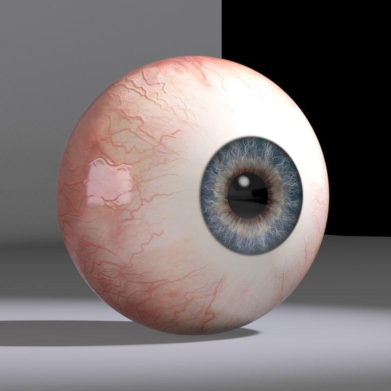 human eyeball eyes 3d c4d