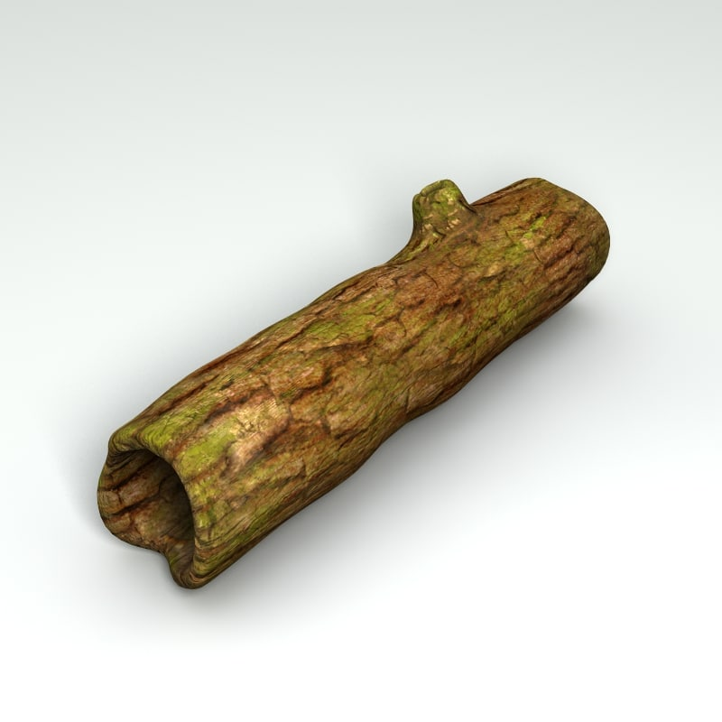 3d max hollow tree trunk