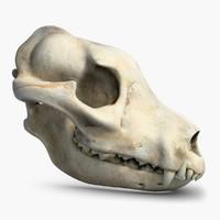 dog skull 2 3ds