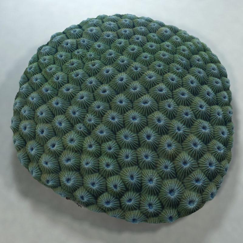 3ds max favia coral