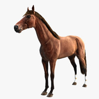 3d thoroughbred horse rig