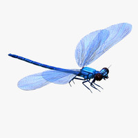 max realistic dragonfly