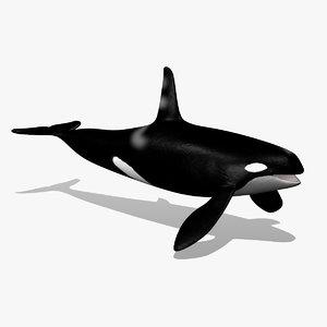 3d 3ds orca killer whale