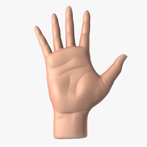 realistic female hand 3d model