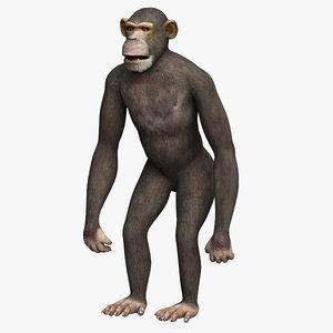 3d 3ds chimpanzee