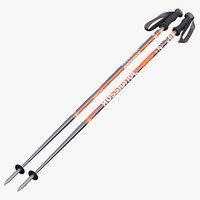 Alpine Ski Poles