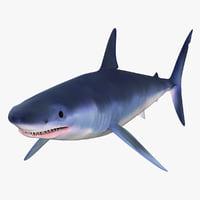 mako shark 3d model