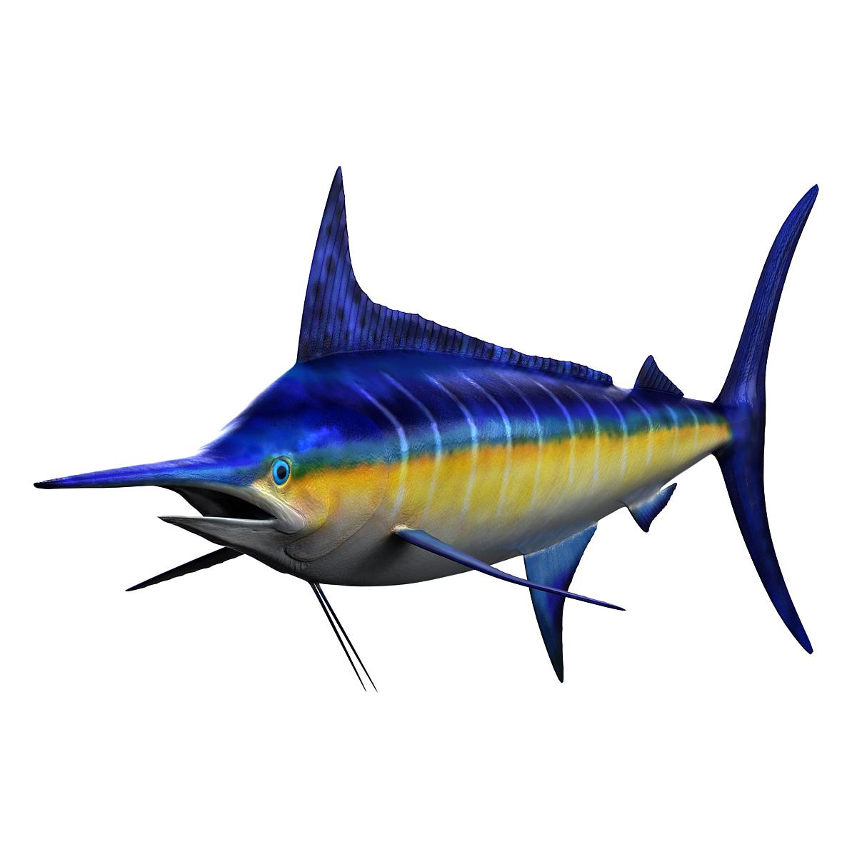 3ds max marlin fish