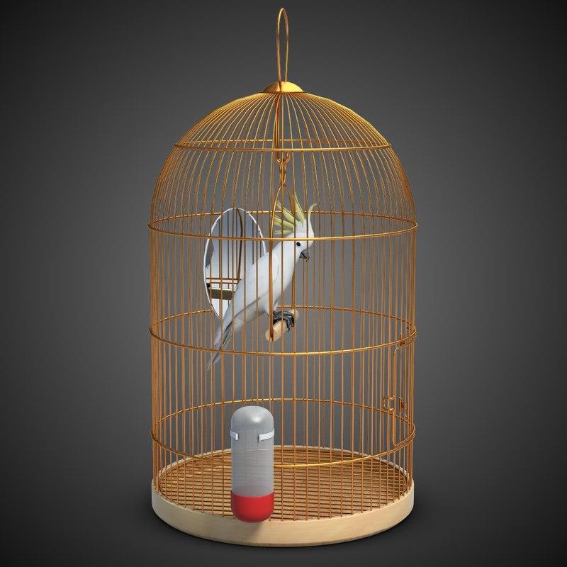 parrot birdcage max