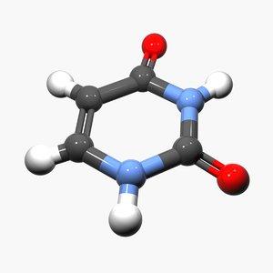 max nucleobase dna