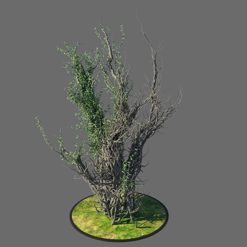 3ds max plant tree vegetation