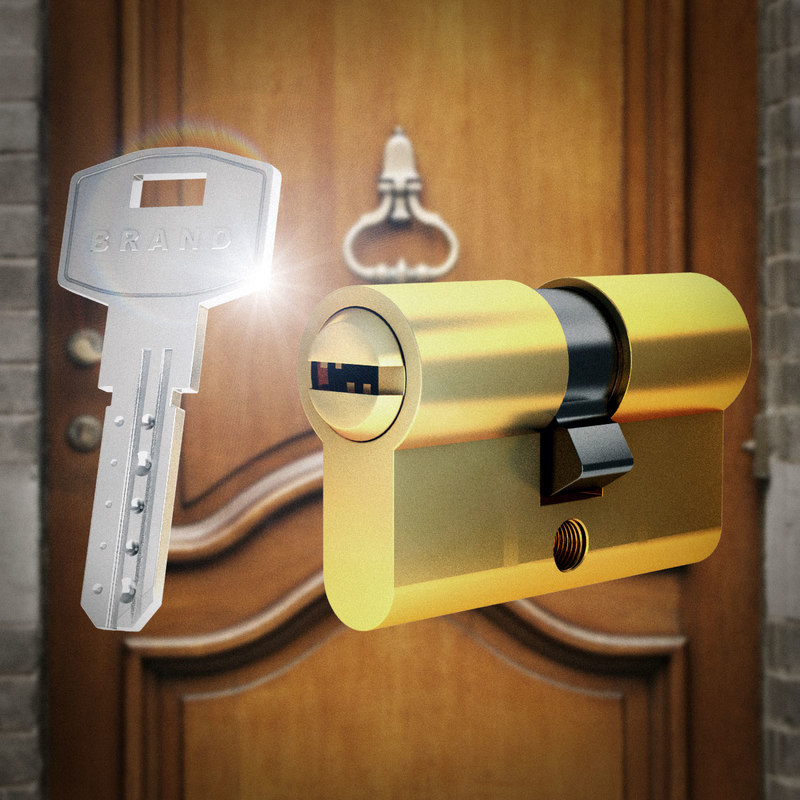 max realistic door key lock