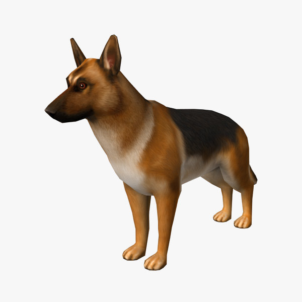 3d model of german shepherd