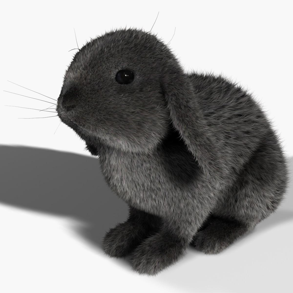 3d model rabbit gray fur