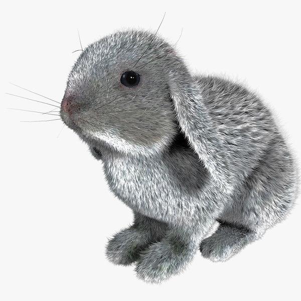 max rabbit fur