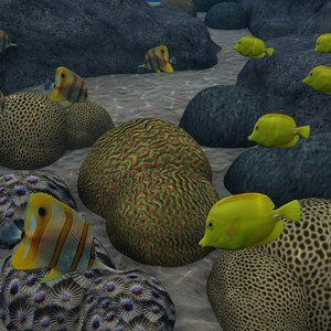 max coral reef