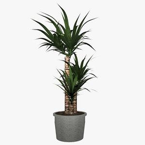 palm tree green 3d model