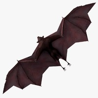 flying fox 3d model