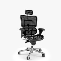 Office Chair Ergohuman