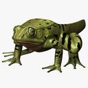 frog metamorph 3D models