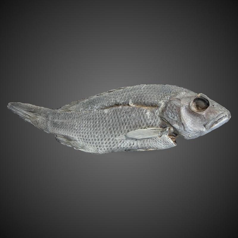 3ds max dry stock fish hi