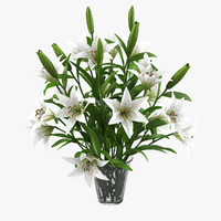 lily flower bouquet 3d model