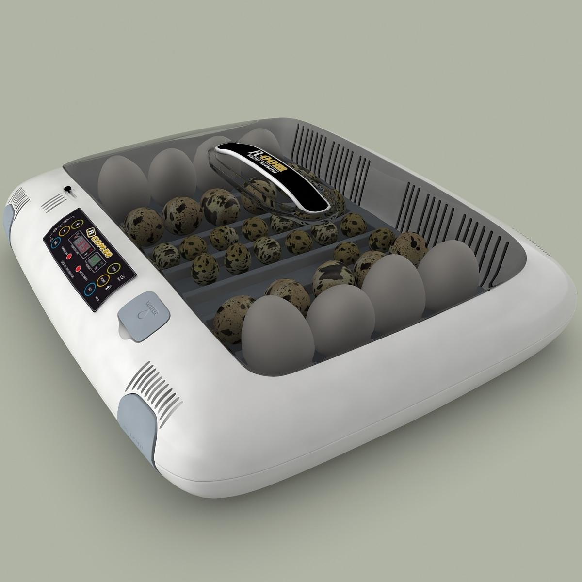 digital incubator r-com 50 3d model