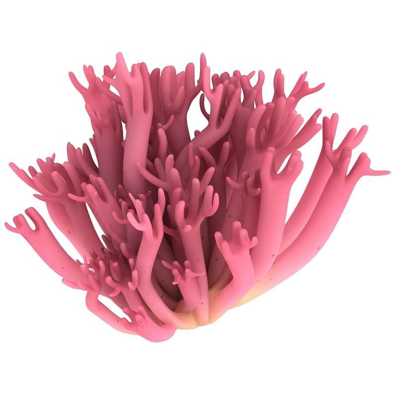 3ds violet branched coral fungus