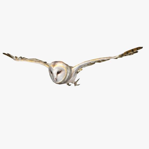barn owl animations 3d obj
