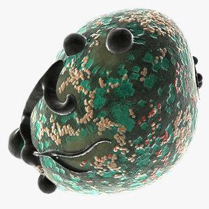 burkitt s lymphoma virus 3d model