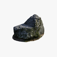 x large mossy stone