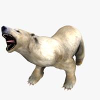 polar bear animations 3d model
