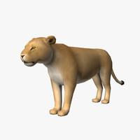 maya female lion
