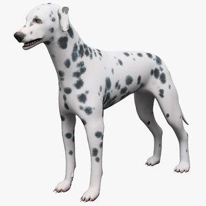 max dalmatian dog rigged
