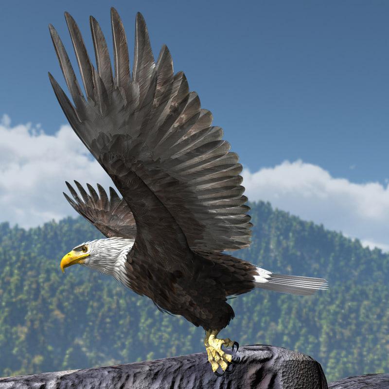 3d model rigged lightwave eagle