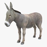 Rigged Donkey
