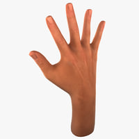 male hand 3d 3ds