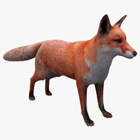 3ds max red fox