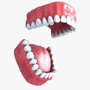 teeth s 3d model