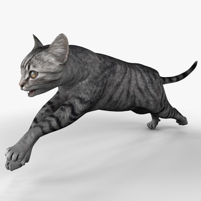 3d c4d cat 3 pose 2