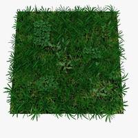 Grass 04