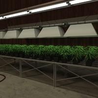 3d marijuana barn
