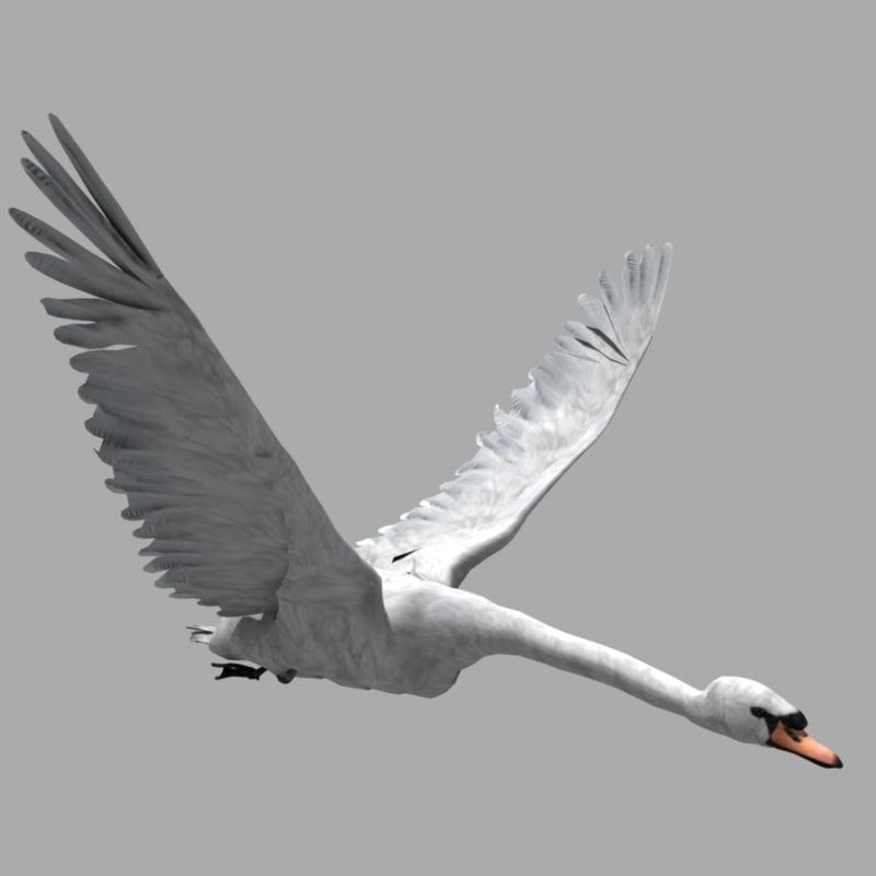 swan animators 3d model