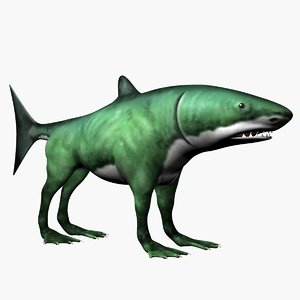 max shark dog