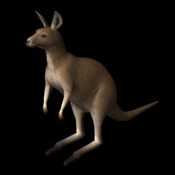kangaroo edge loop 3d model