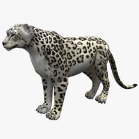 Snow Leopard Rigged