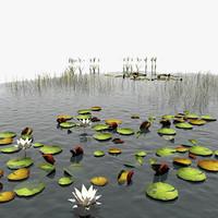 fishing pond 3d max